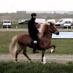 Fluga frá Heiðarbrún, f. 1998